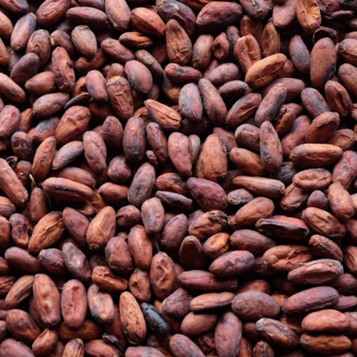 cocoa-beans2-1479114729-2560089